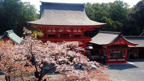近江神宮 内拝殿から桜門を