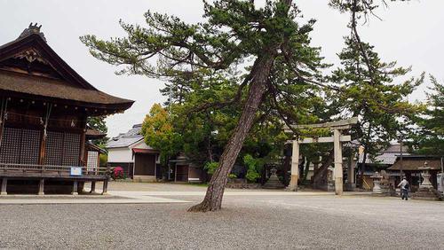 駐車場になっている 境内 拝殿前の広場