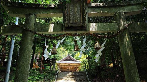 紅葉のトンネルの中に鳥居が。「波爾布神社」と書かれています。