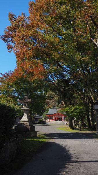 瀬田川の中にある高台に建つ本殿