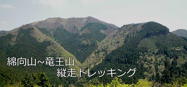 竜王山から見た綿向山