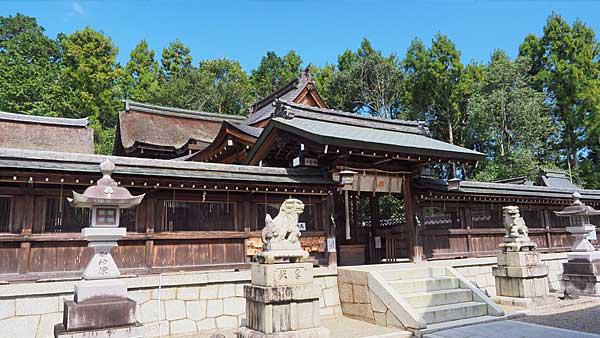苗村神社 本殿
