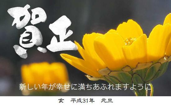賀正 新しい年が幸せに満ちあふれますように 亥 平成31年 元旦