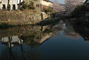 八幡掘り 船溜まり 川面に映る風景