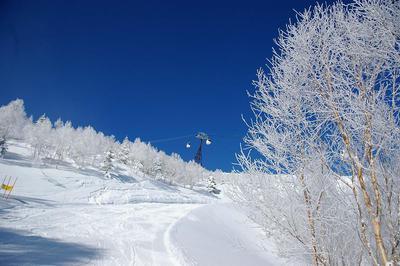 奥志賀高原スキー場 ヒルサイドコース