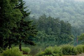 志賀高原 大沼池の真っ赤な鳥居