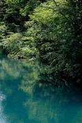 志賀高原 大沼池 神秘の水色