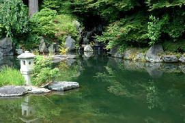 20番 西山 善峯寺 境内(龍が…)