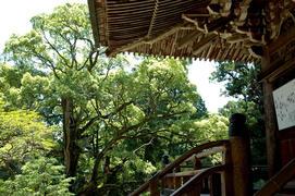27番 書寫山 圓教寺(西の比叡山)