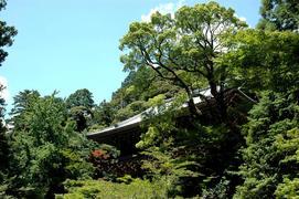 27番 書寫山 圓教寺(参道より)