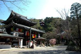 15番 新那智山 観音寺(今熊野観音寺)
